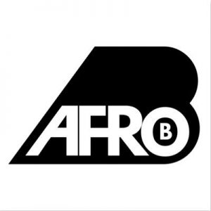 AFRO13